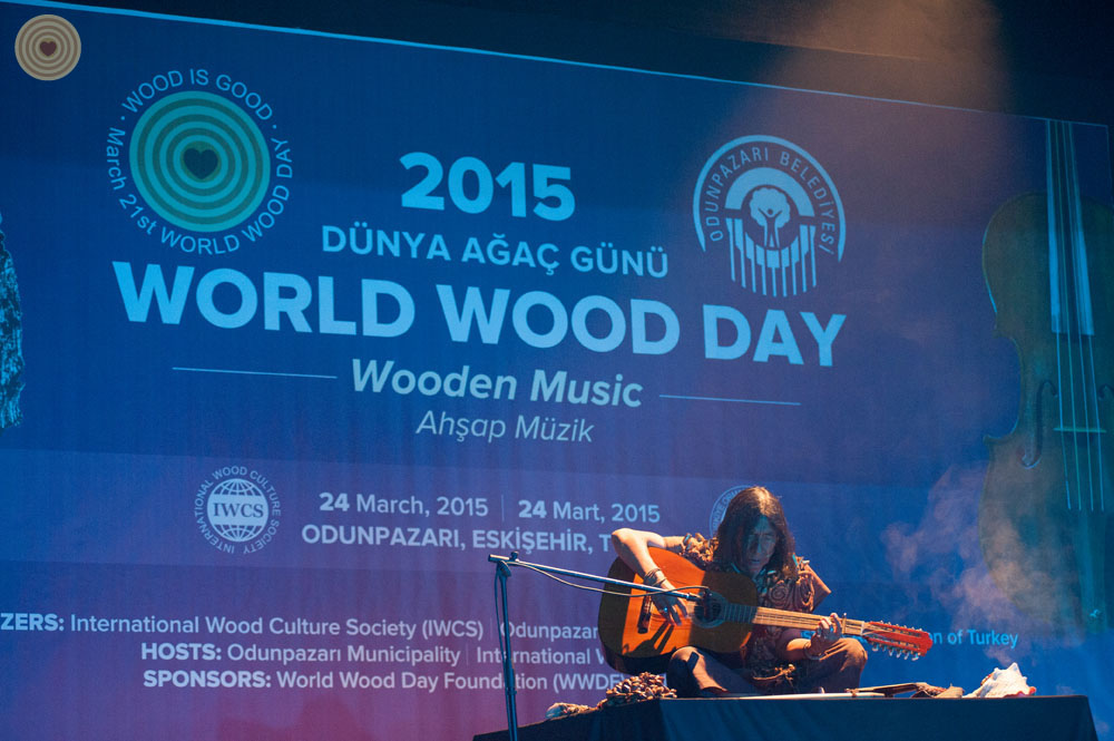 2015 WWD, concert, Turkey