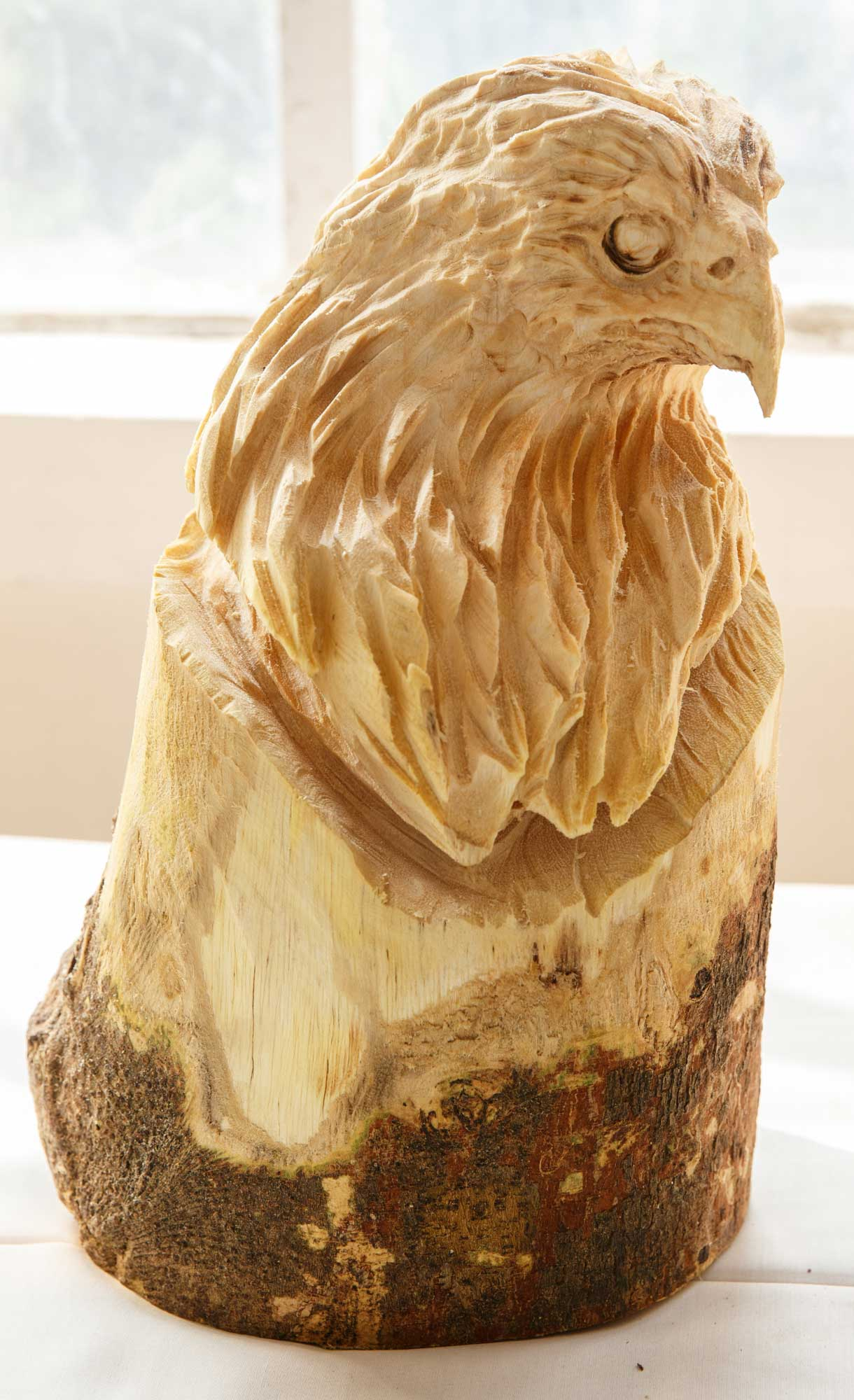 2016 WWD, woodcarving show, works